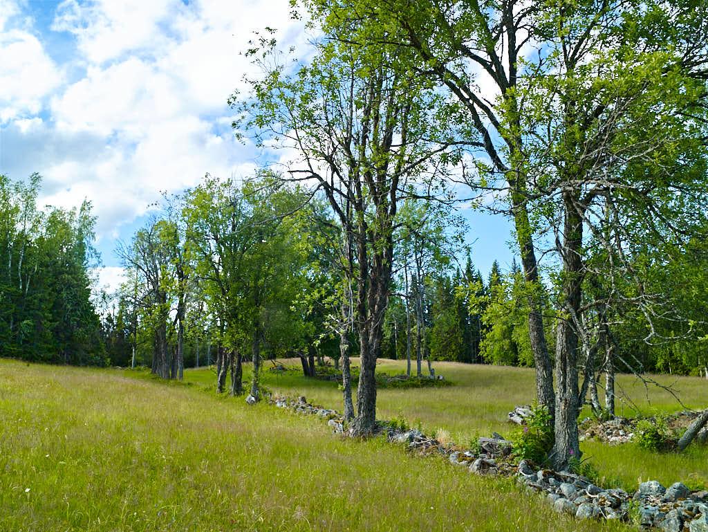 Spåren av de gamla odlingsmödorna ser man bland annat i den stenmur som skiljer en del av de två torpen.